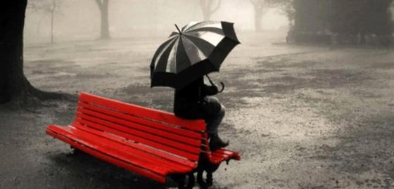 bench rain